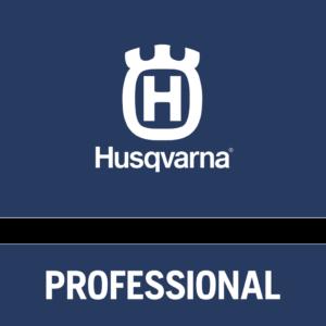 HVA_Professional_logo